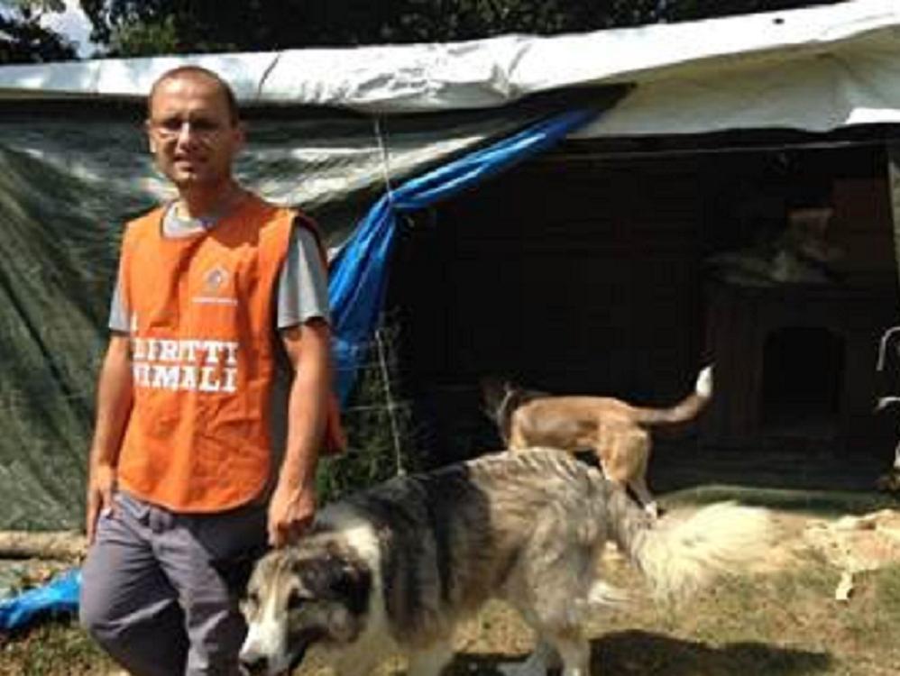 Zone terremotate, la Lav ha soccorso animali in più di 100 ...