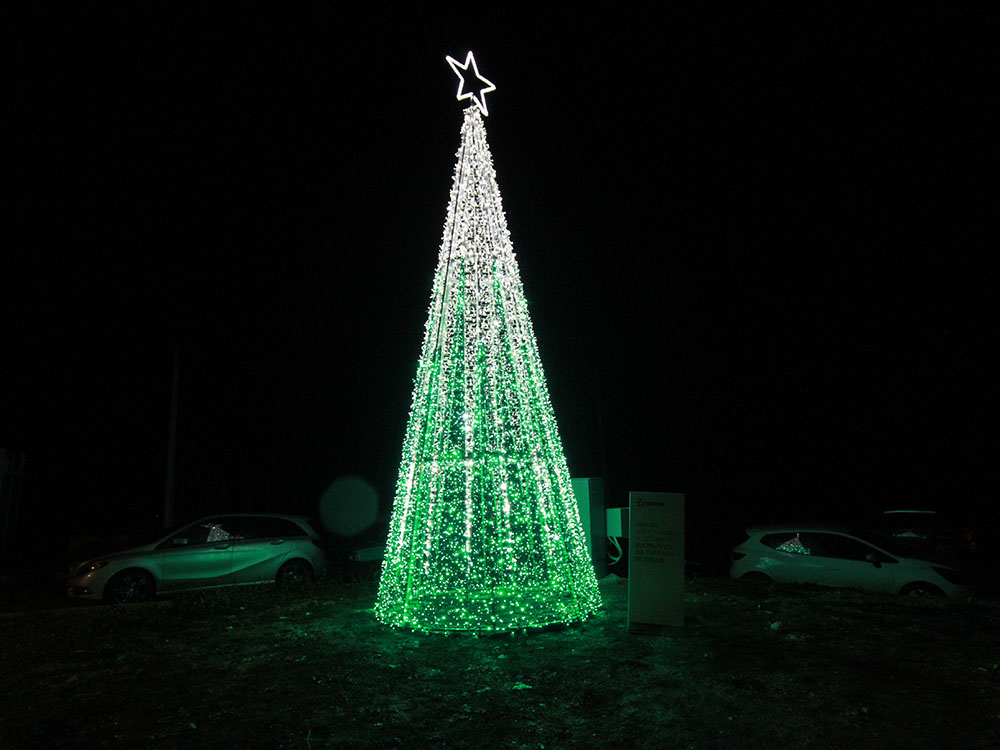 Albero Di Natale 8 Dicembre.Cittareale L 8 Dicembre Accensione Dell Albero Di Natale Donato Da